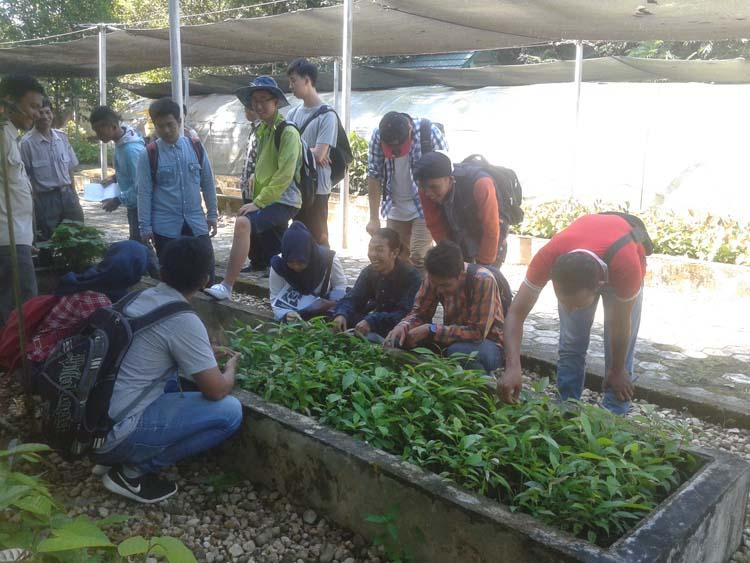 Ratusan Mahasiswa Fahutan Praktek di BPK Banjarbaru