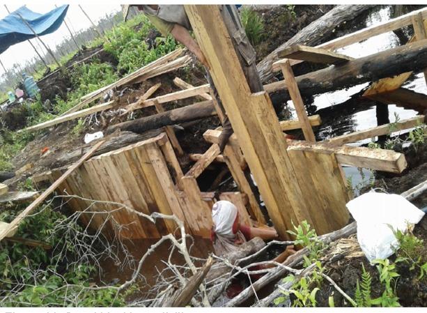 AFoCo Bangun Demplot  Tanaman di KHDTK Tumbang Nusa