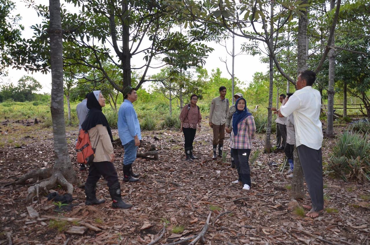 Tinjau Lokasi 3R, Kepala Pokja Bidang Penelitian Restorasi BRG Kunjungi KHDTK Tumbang Nusa