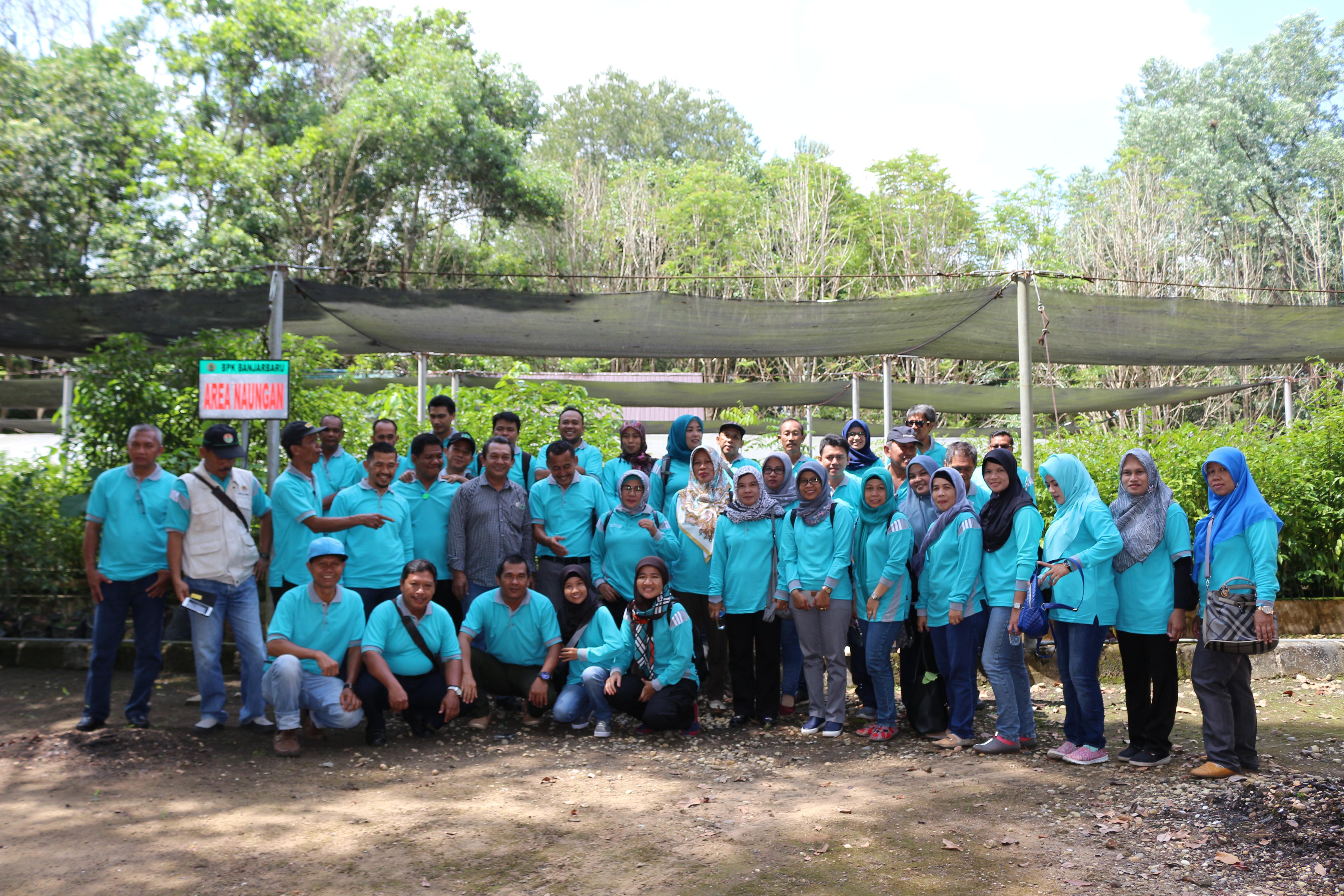 Penyuluh Kehutanan Kalsel Belajar Teknik Pembibitan Stek Pucuk di BP2LHK Banjarbaru