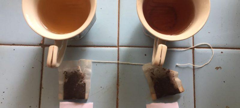 BP2LHK Banjarbaru lakukan uji organoleptik herbal antidiabetes dari teh daun Gemor