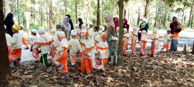 PAUD IT Bina Insan Belajar tentang Pohon di BP2LHK Banjarbaru