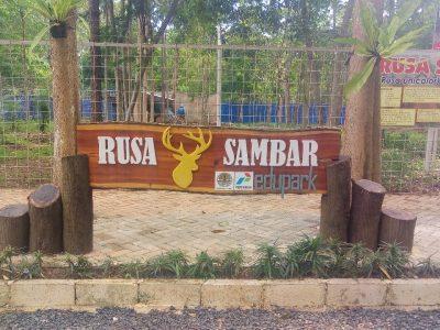 Antusiasme Pengunjung Edupark BP2LHK Banjarbaru terus meningkat
