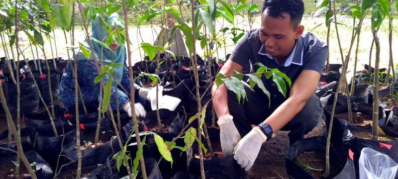 Balai Litbang LHK Banjarbaru  Membuat Kombinasi Bahan Pembenah Tanah  Yang Berhasil Tingkatkan Pertumbuhan Tanaman di Kebun Raya Banua